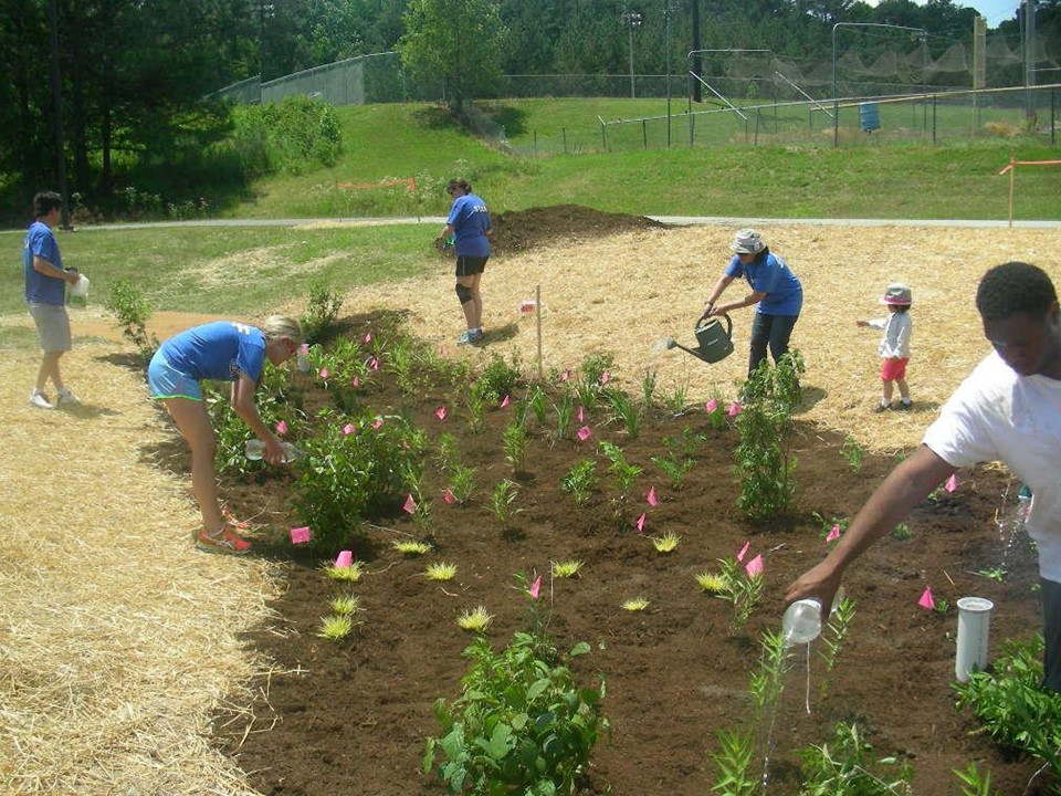 A rain garden being maintained by teachers and students.